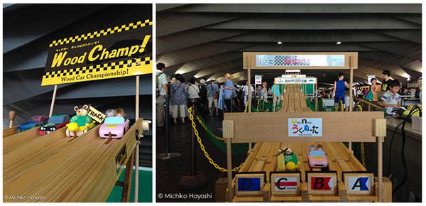 WoodChamp-00.jpg